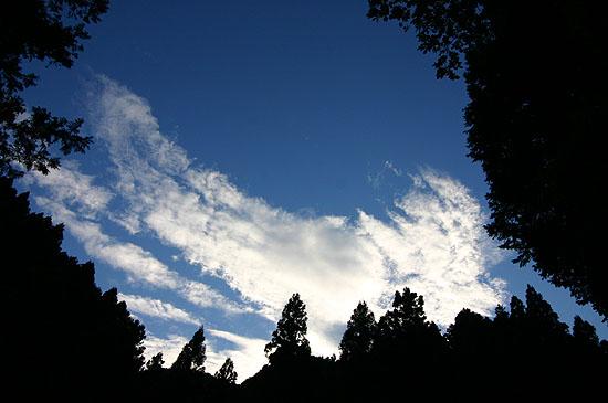 ウソみたいに青い空。